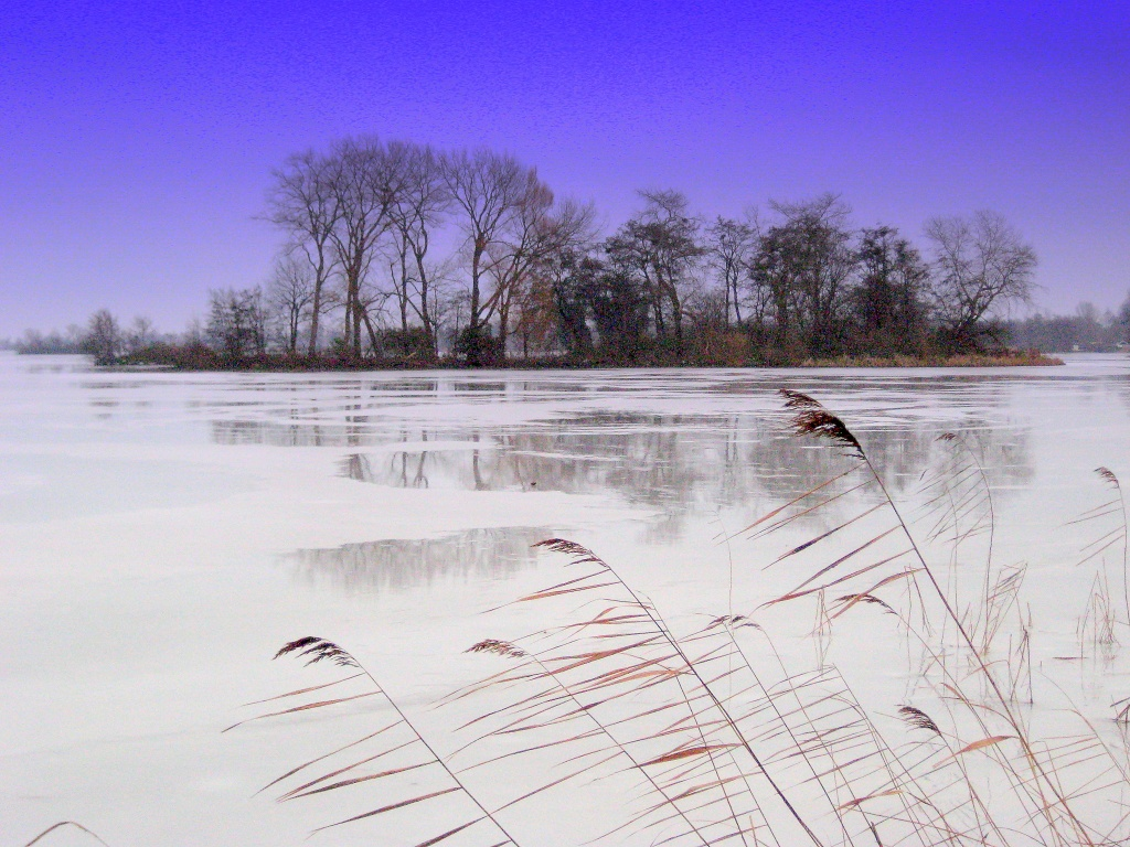 reflections on ice | Witchwithaview