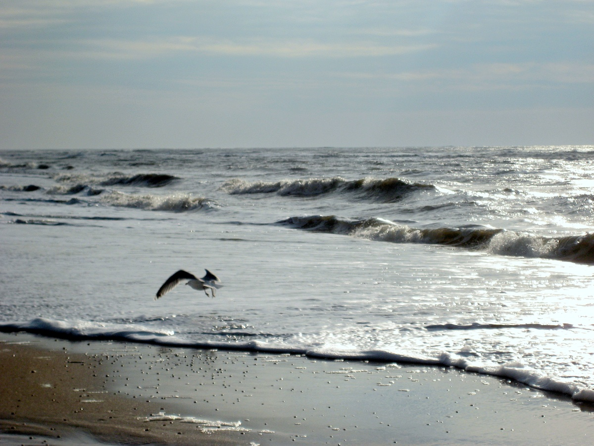 castricum aan zee | witchwithaview