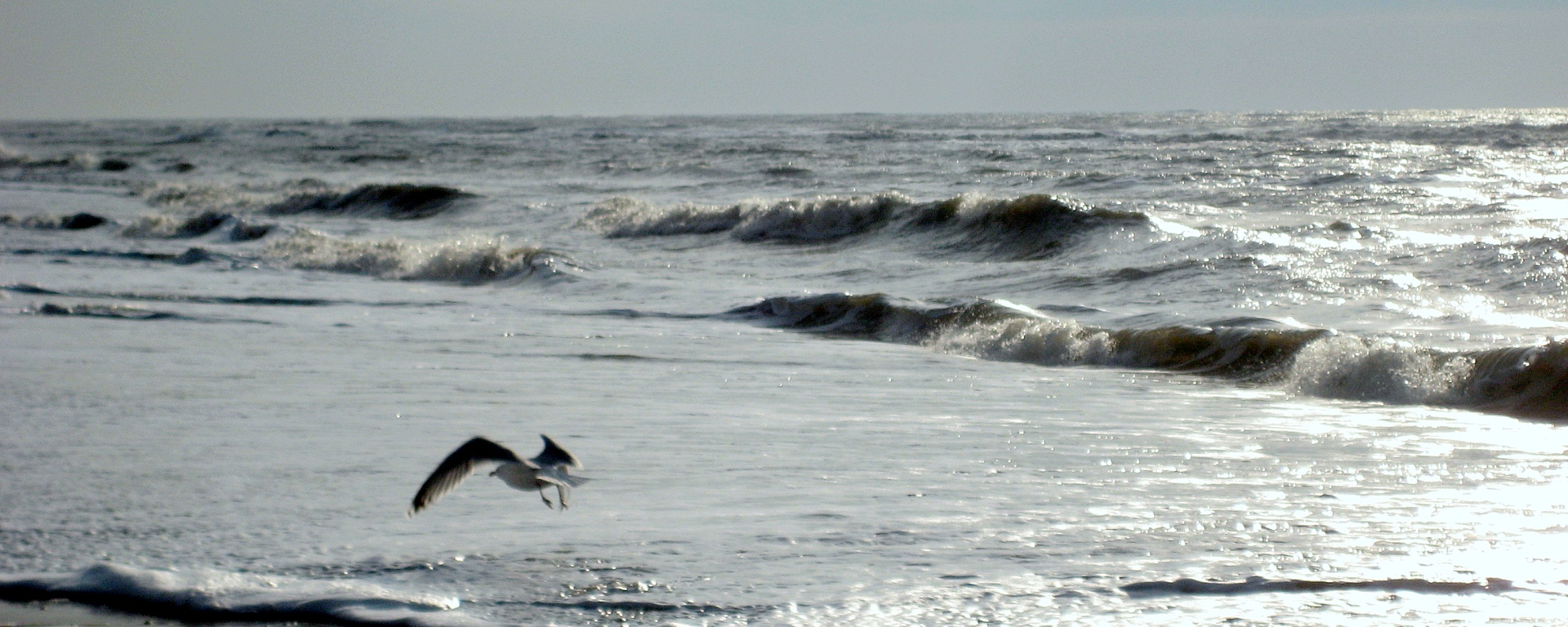 castricum aan zee   witchwithaview