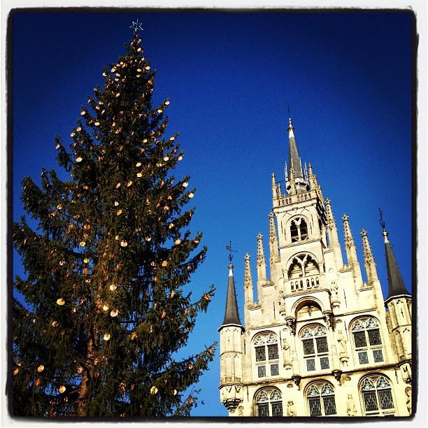 stadhuis en boom op kaarsjesavond 2012 in gouda