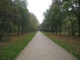 2013 11 10_0556