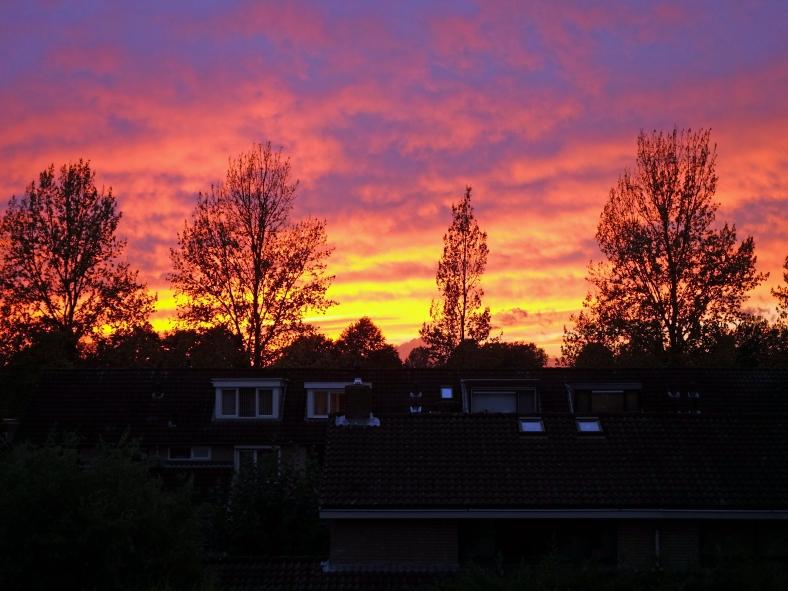 weekly photo sunset