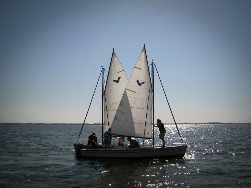 butterfly sailing converge