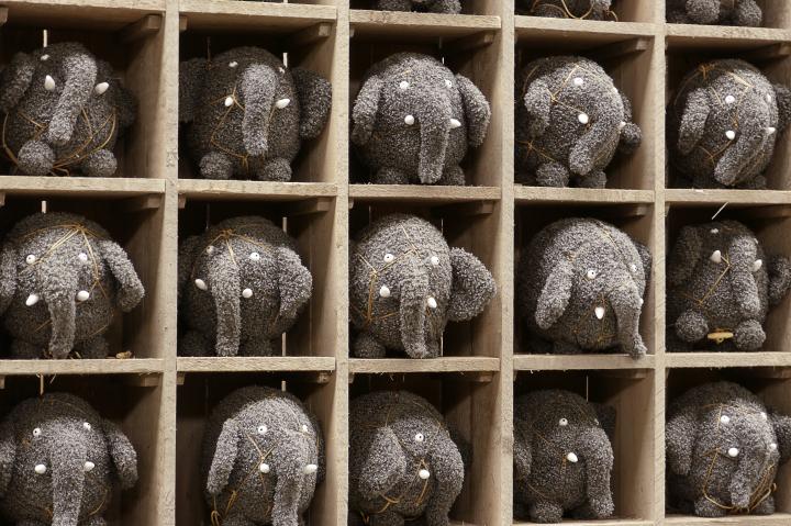 elephants - cee's odd ball photo challenge