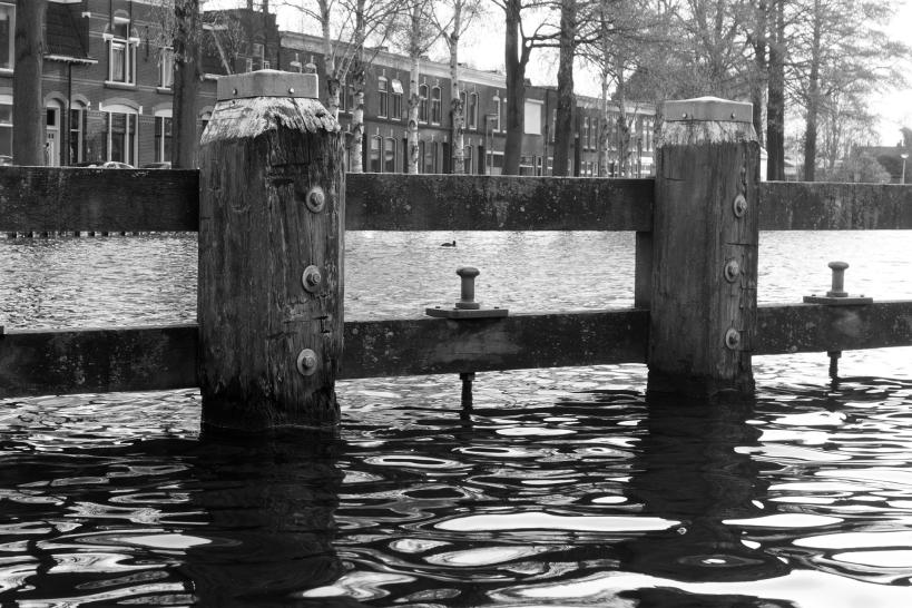 wordless wednesday gouda waterfront