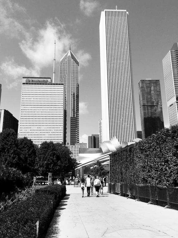 monochrome monday millenium park