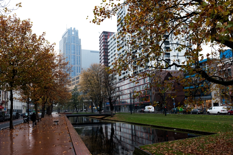 wordlesswednesday-rotterdam-in-the-autumn
